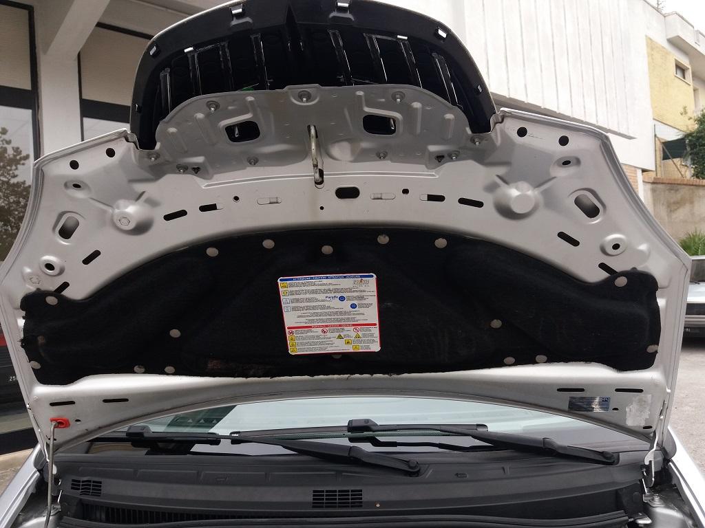 Lancia Musa 1.3 Multijet 95 cv DFN Platinum (48)
