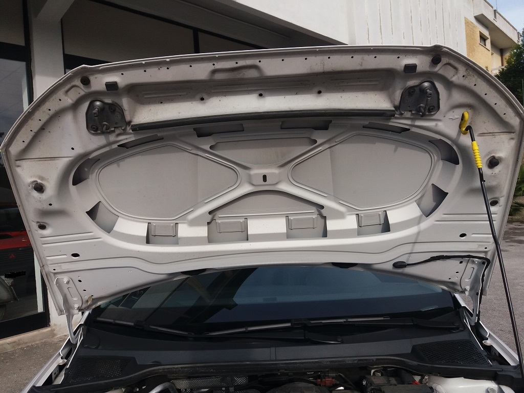 Seat Ibiza 1.0 EcoTSI 95 cv 5p FR (47)