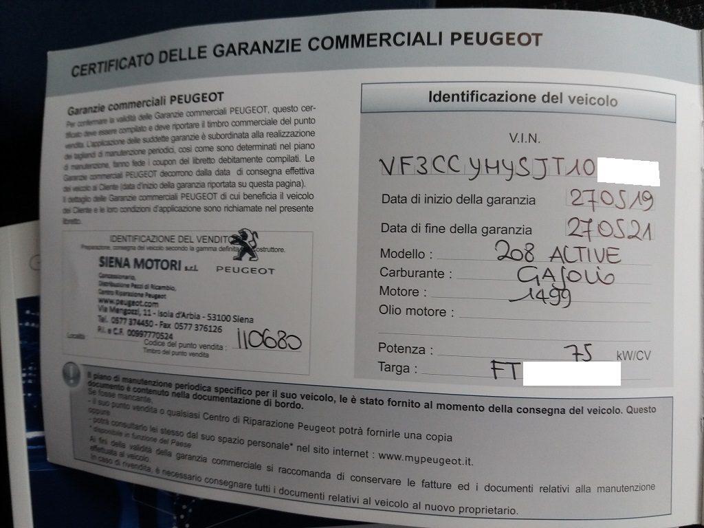 Peugeot 208 BlueHDi 100 S&S 5p Active (45)