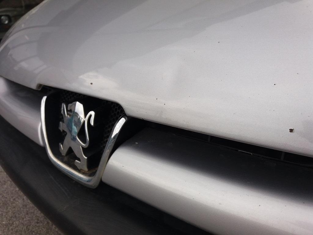 Peugeot 206 1.9 diesel 5p XTD (48)