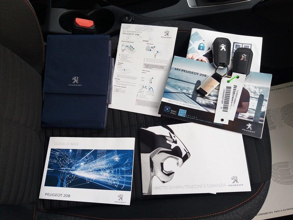 Peugeot 208 BlueHDi 100 S&S Active (41)